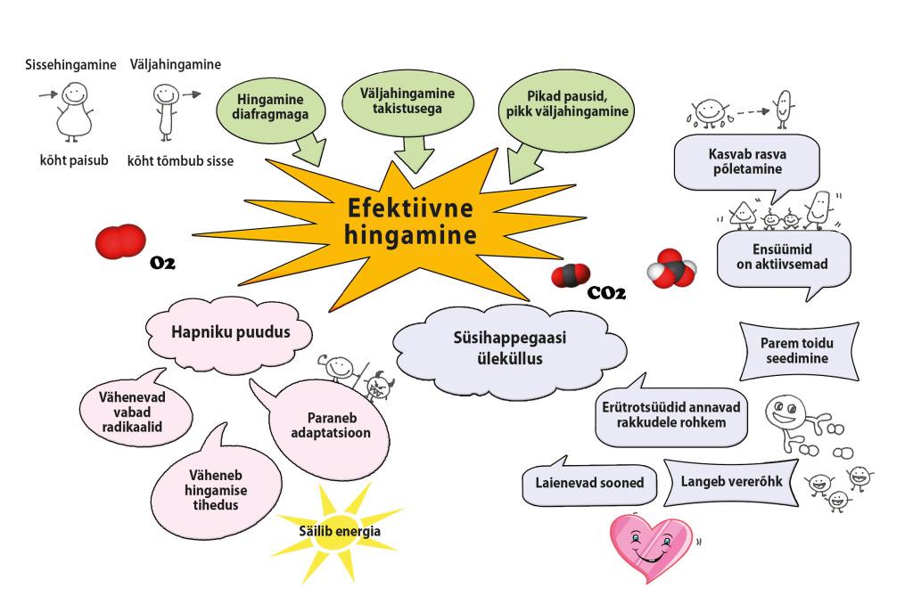 Efektiivne hingamine skeem