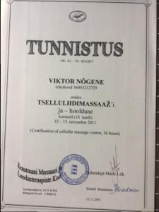 Viktor 9